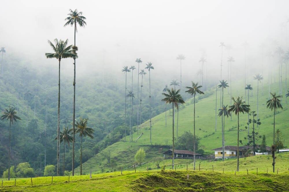 Kolumbien Highlights