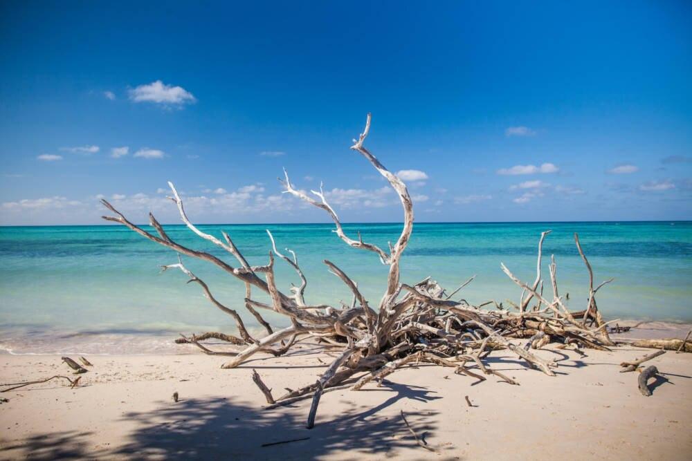 Die kubanische Insel Cayo Jutias