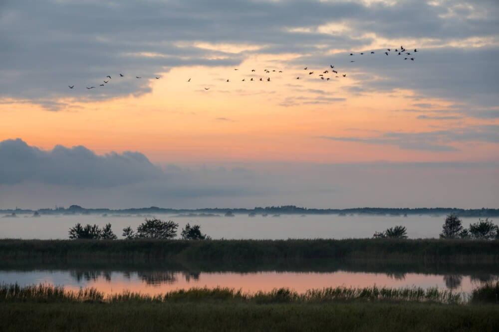 Vorpommersche Boddenlandschaft Nationalpark
