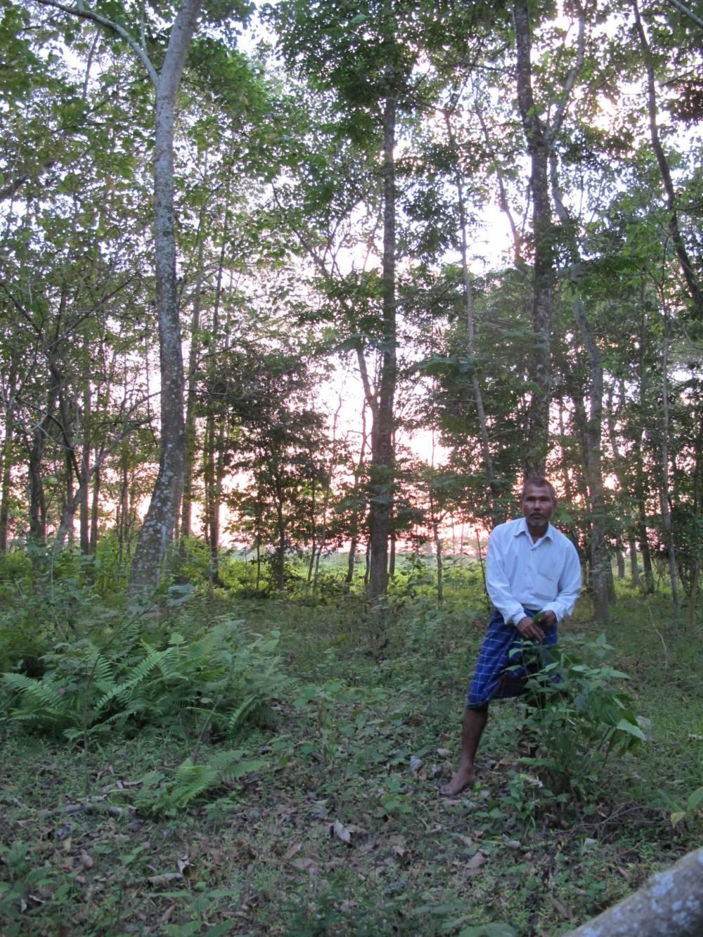 Jadav Payeng im Molai-Wald auf Majuli, Indien