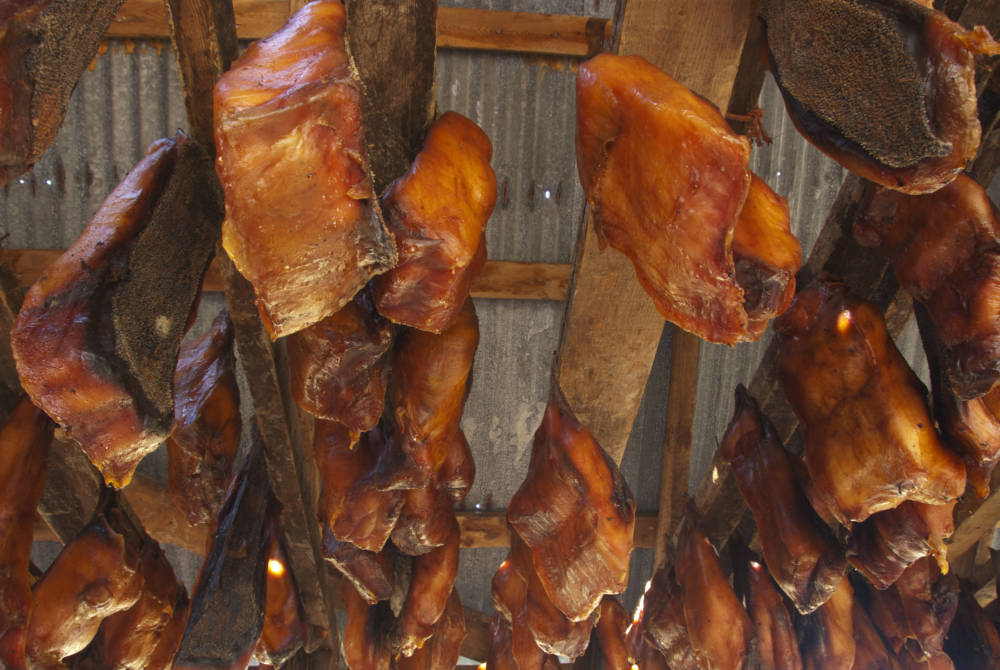 Hákarl ist das Fleisch des Grönland-Hais