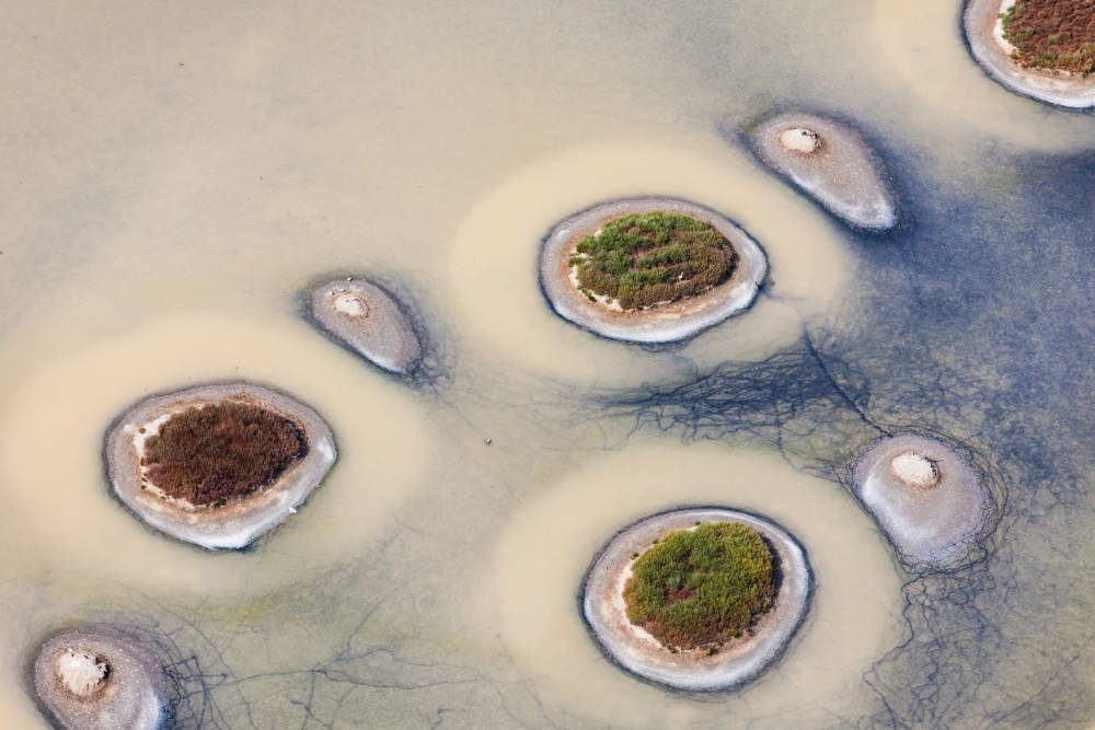 Inseln im Naturschutzgebiet bei L'Ile d'Olonne, Frankreich