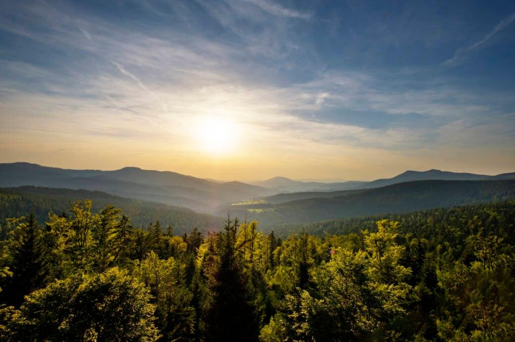 Es muss nicht immer weit weg sein: Gerade bei den warmen Temperaturen, die in Deutschland für Ostern angesagt sind, ist zum Beispiel der Bayrische Wald eine tolle und preisgünstige Alternative