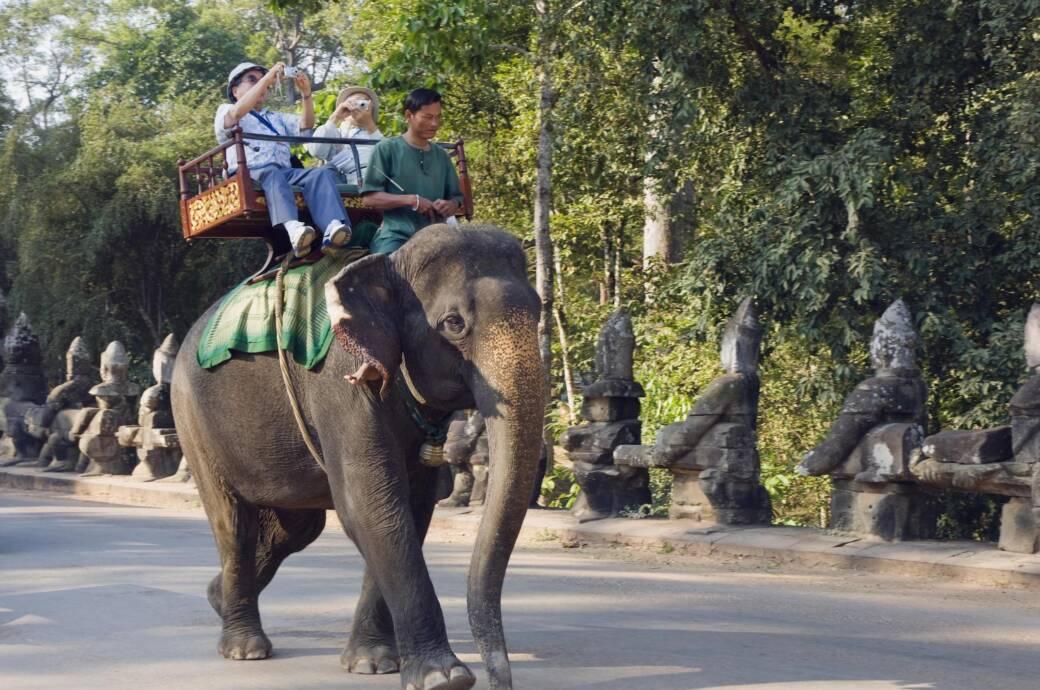 Elefantenreiten Angkor Wat