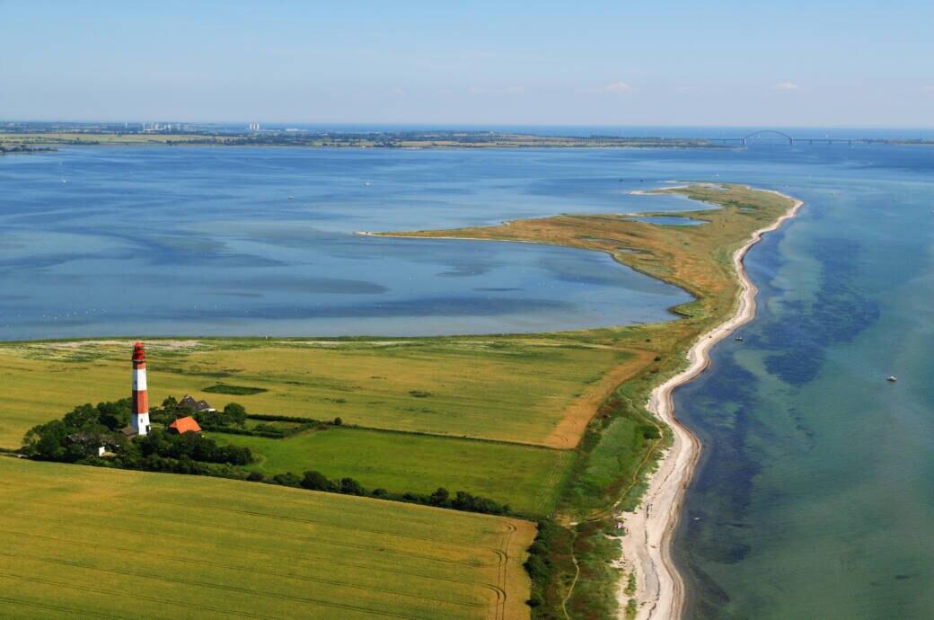 Möglicherweise erreichen die Blaualgen bald die deutsche Ostseeküste
