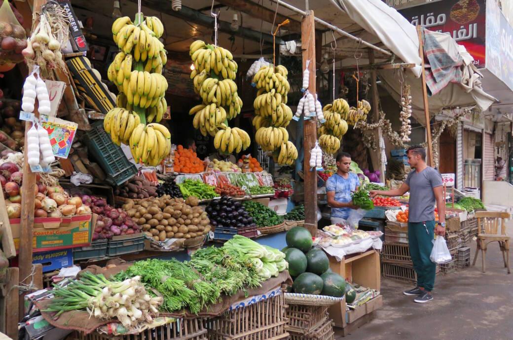 Vorsicht vor E.coli-Bakterien in Ägypten!