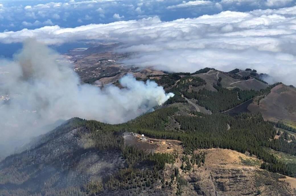 Waldbrand auf Gran Canaria unter Kontrolle