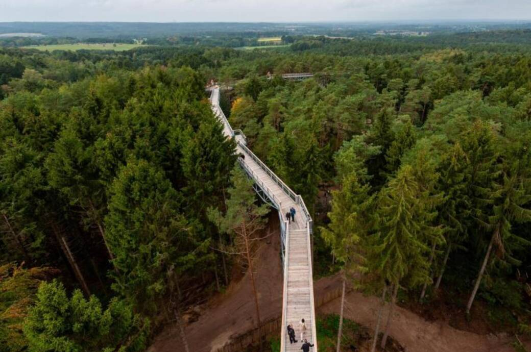 Das ist der höchste Baumwipfelpfad Norddeutschlands