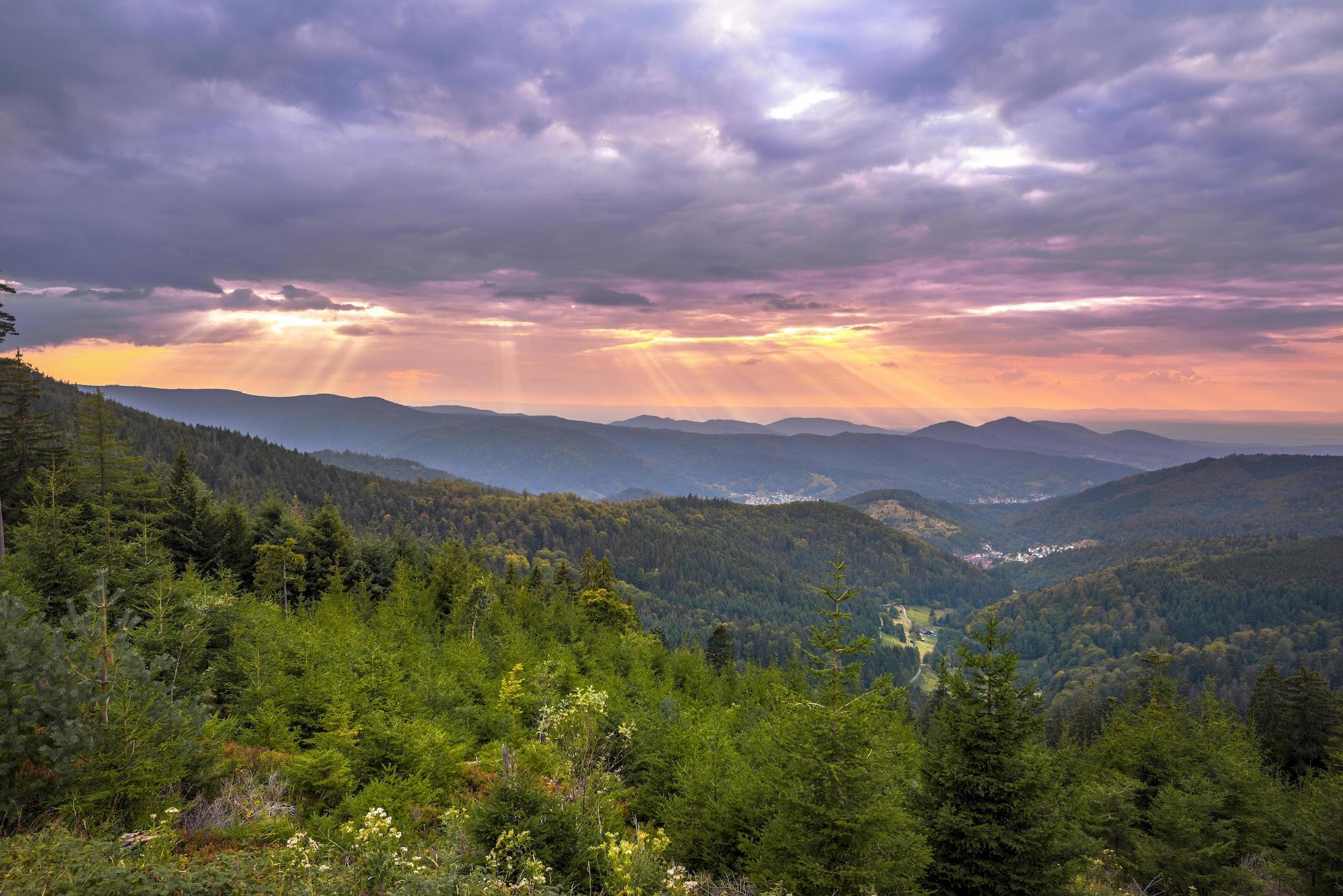 Die 7 besten Reisetipps für den Schwarzwald
