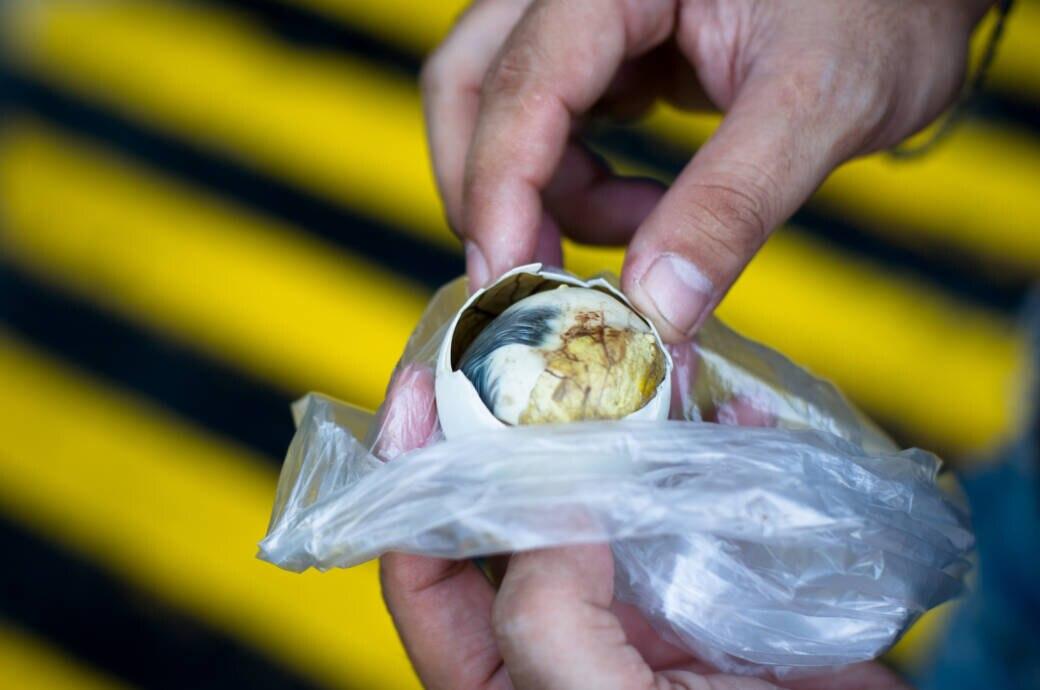 Warum diese Ekel-Eier in Asien so beliebt und hier verpönt sind