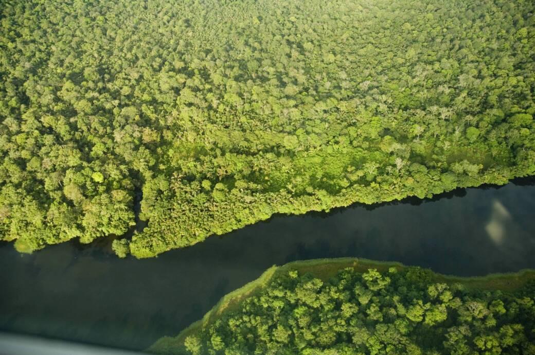 River in Tortuguero