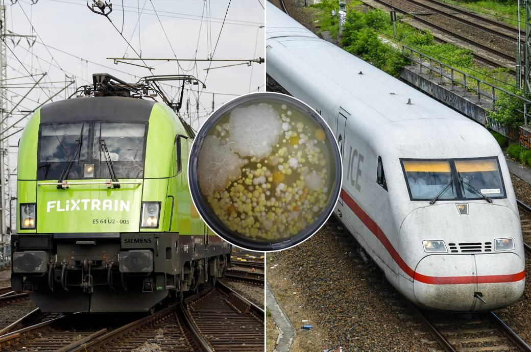 Hygienetest in Zügen