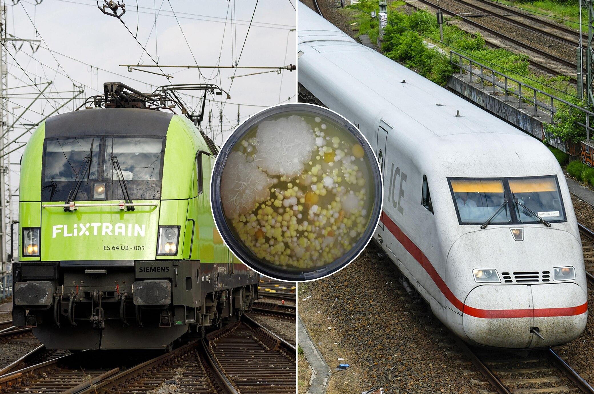 Wie verkeimt sind Fernzüge in Deutschland?