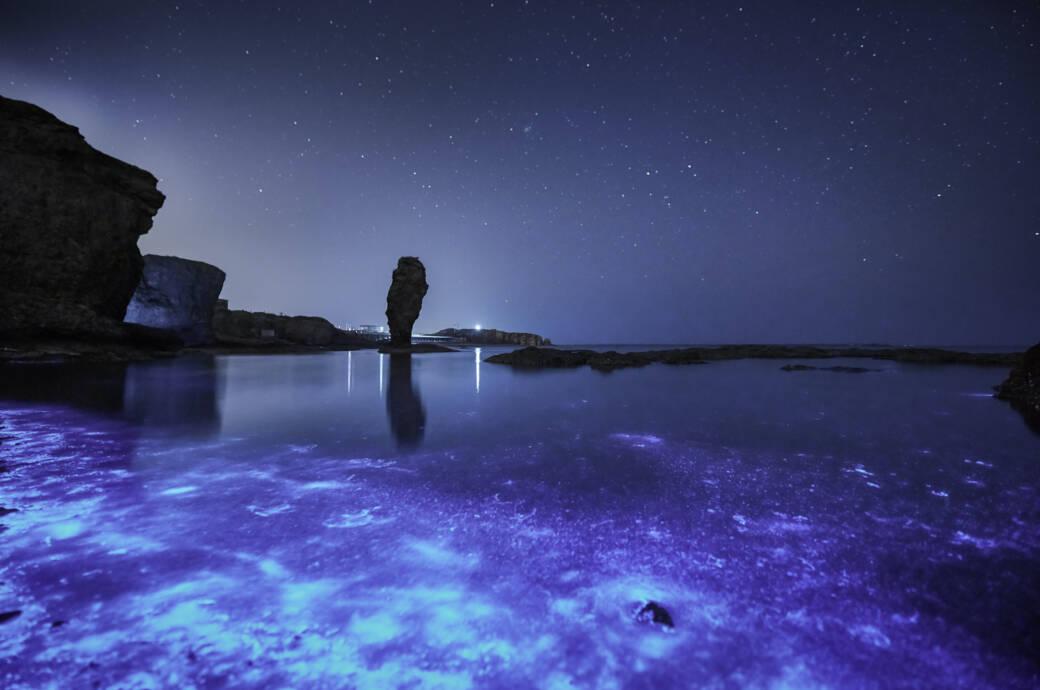 Meeresleuchten Ostsee
