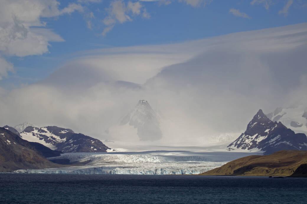 Südgeorigien wird auch als Galapgos der Antarktis bezeichnet – und aktuell von dem größten Eisberg der Welt bedroht, der darauf zutreibt