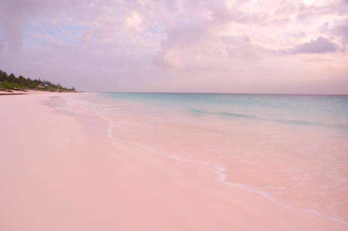 Pink Sands Beach auf Harbour Island, Bahamas