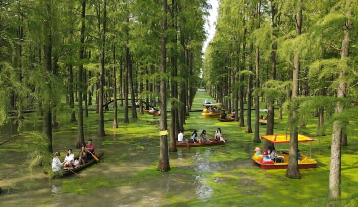 Luyang Lake Wetlands Park